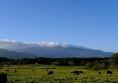 X-T3で撮影!深山牧野から見た栗駒山の風景尾の写真