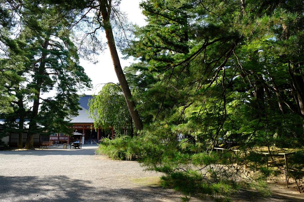 毛越寺の正面から撮影した風景写真