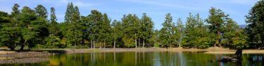 毛越寺の紅葉前の風景写真