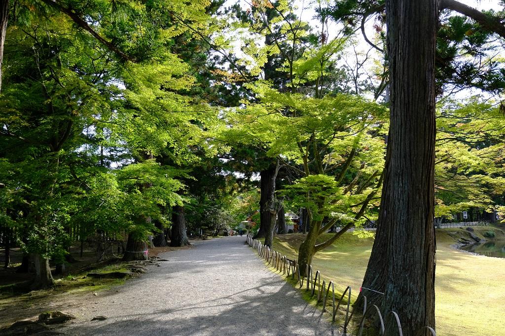 毛越寺のトレッキングコースの紹介