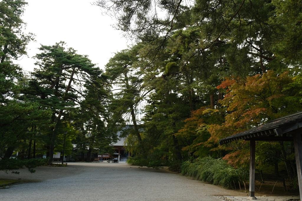 毛越寺本堂を正面に臨む写真