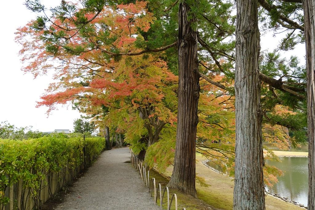 毛越寺大泉ヶ池をx-t3で撮影した写真
