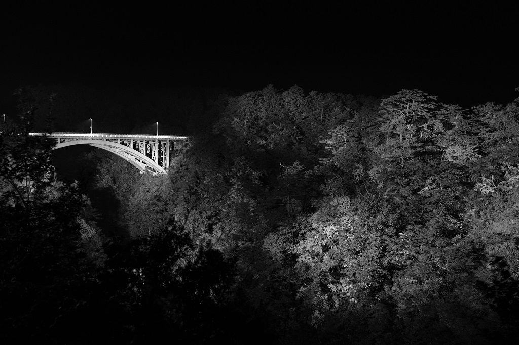 鳴子峡大深沢大橋の紅葉ライトアップの写真