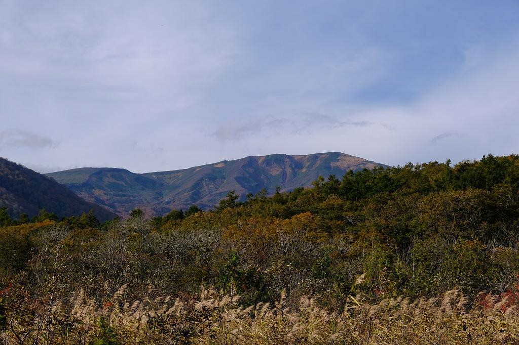世界谷地原生花園から見た栗駒山の景色の写真