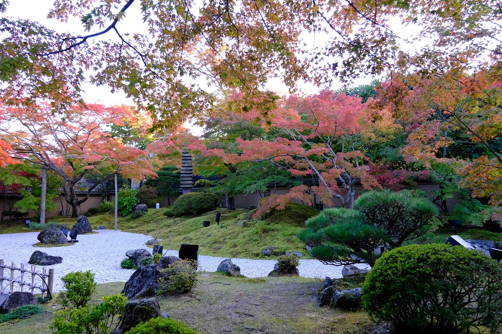 松島円通院の秋の紅葉の写真