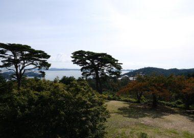 西行戻しの松公園の紅葉の写真