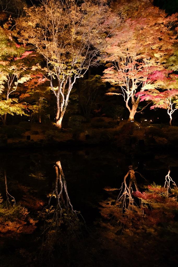 円通院の逆さ紅葉を手持ちで撮影した写真!