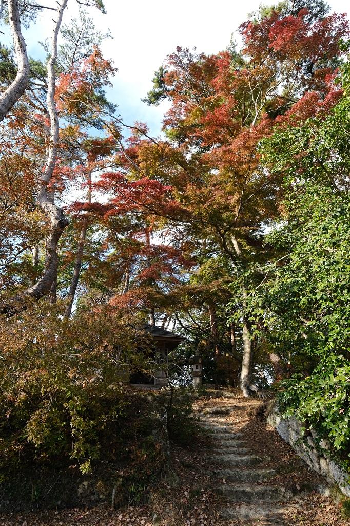 扇谷(幽観)の秋の紅葉の景色をX-T3で撮影した写真