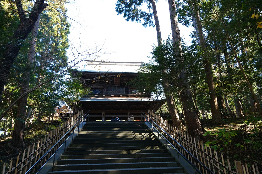 縁が記事の山門を登る石段の風景