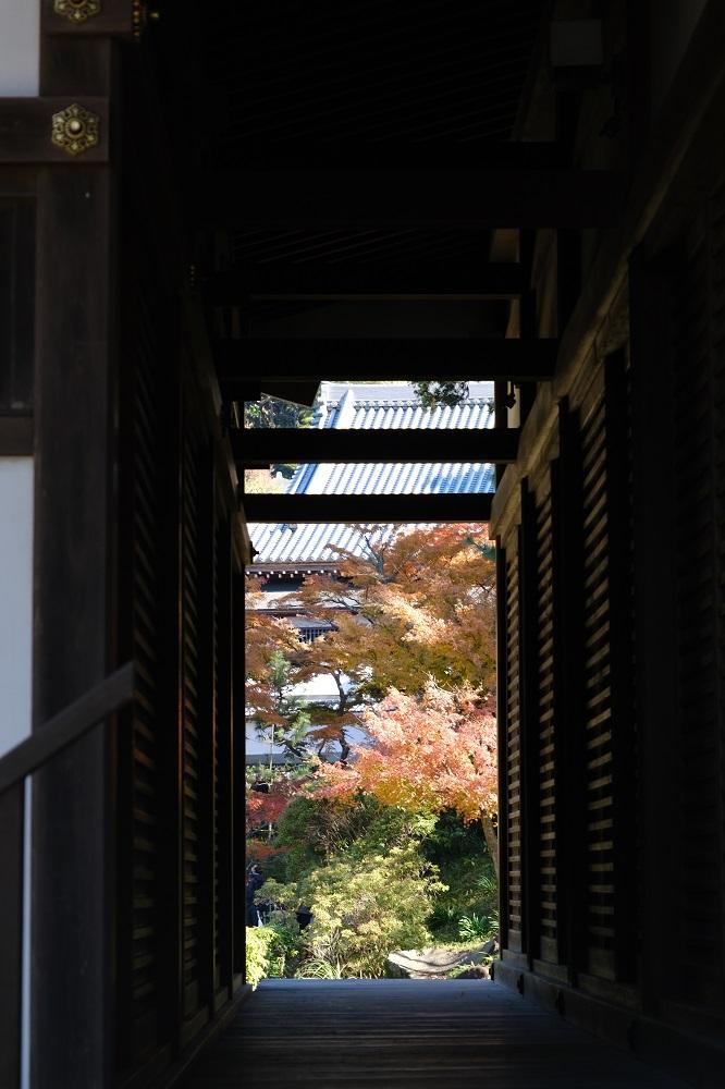 円覚寺の左わきの隙間から