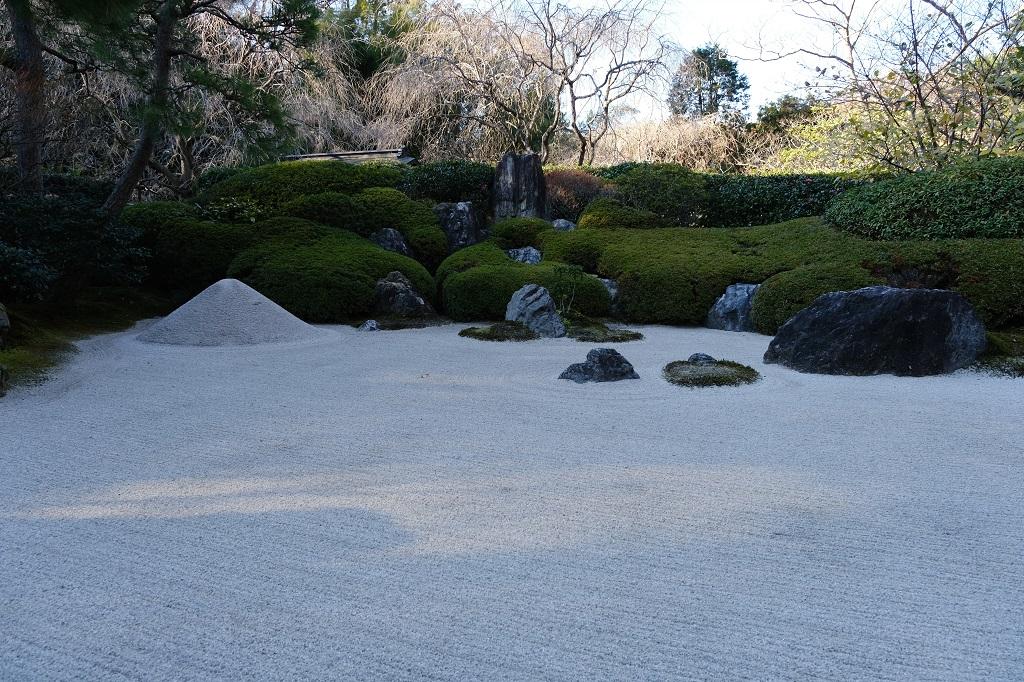明月院の本堂前の素晴らしい日本庭園の写真