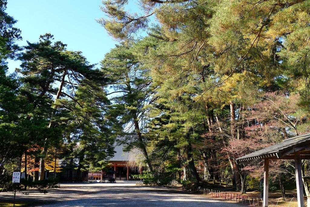 毛越寺16-55F 2.8 撮影毛越寺の写真