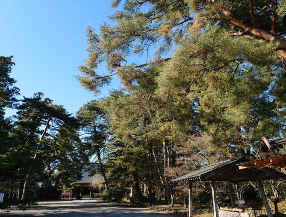 毛越寺の全景写真