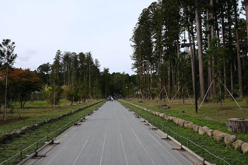 瑞巌寺の参道の写真