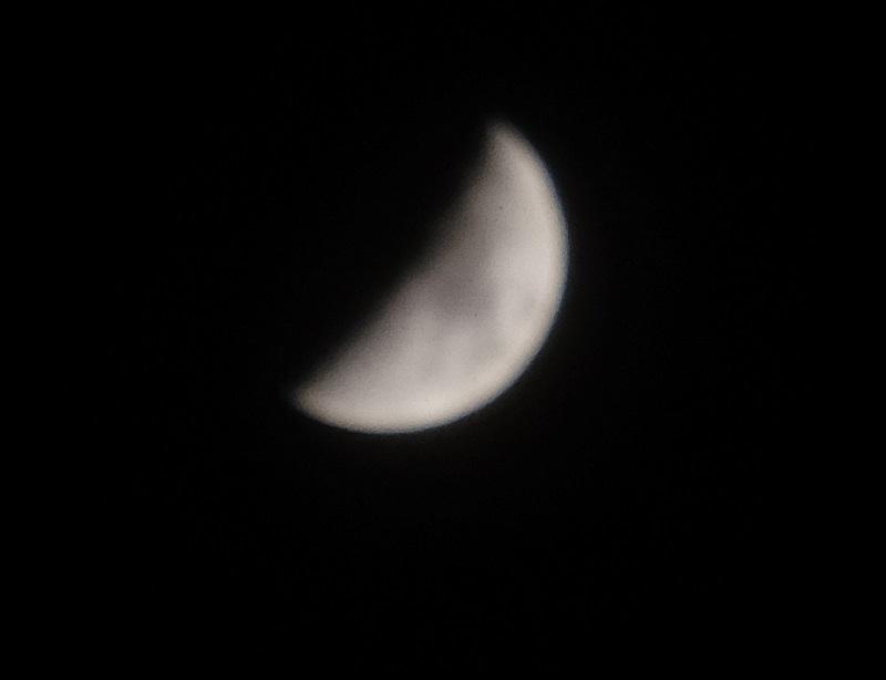 2月の上弦の月の写真