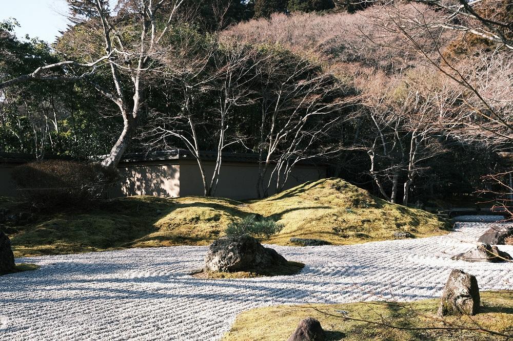 円通院の庭園の苔の風景
