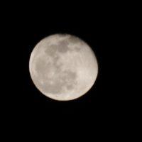 1月の十六夜月の写真