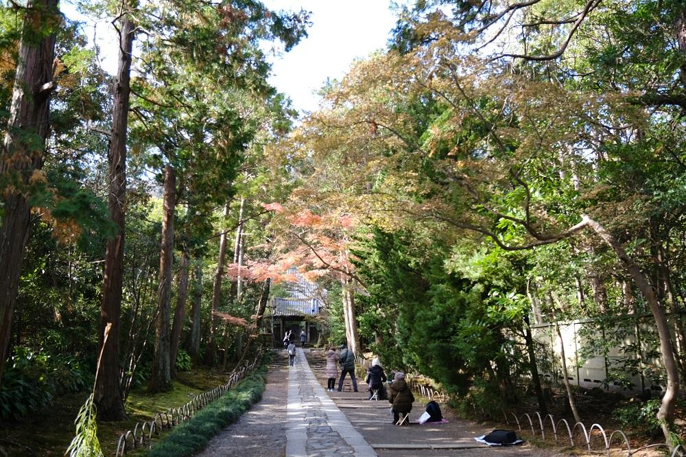 寿福寺の参道の風景写真