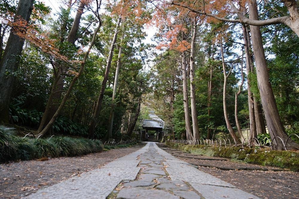 寿福寺の本殿の正門から反対側の参道を望む
