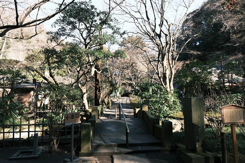 明月院の冬1月の写真