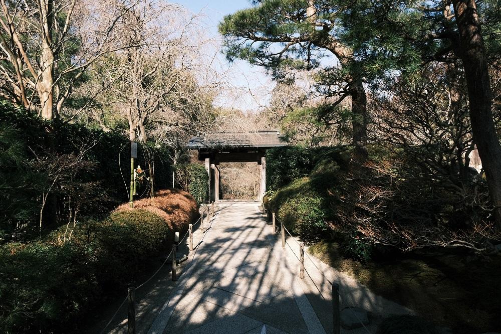 明月院の紋から本堂への参道