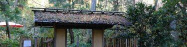 明月院の園内の風景写真