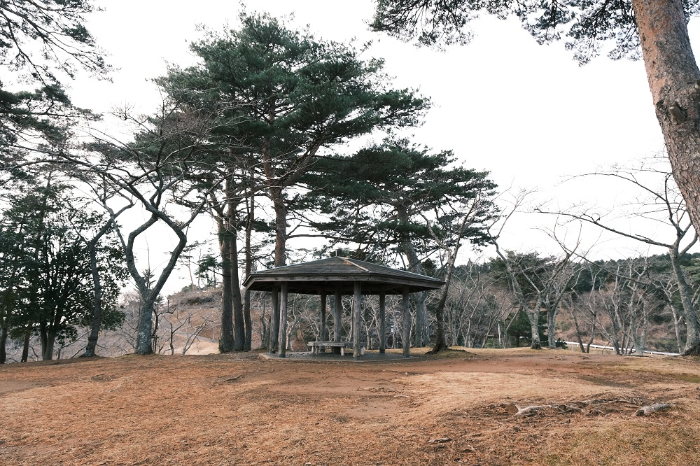 西行戻しの松公園の写真