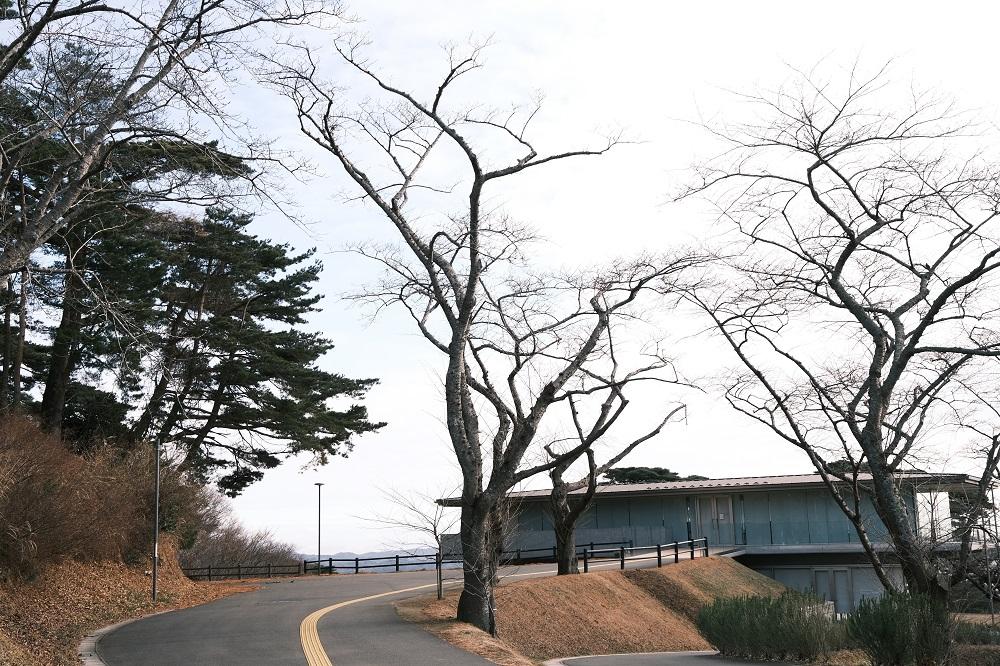西行戻しの松公園のカフェロマン
