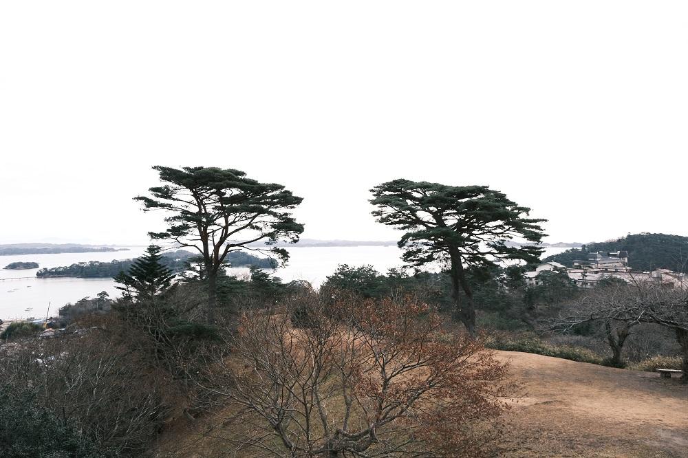 西行戻しの松公園のカフェロマンの裏側からの写真