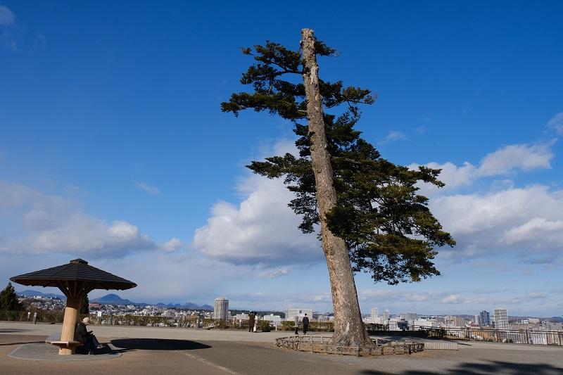 仙台城址公園から見た市内一忘写真