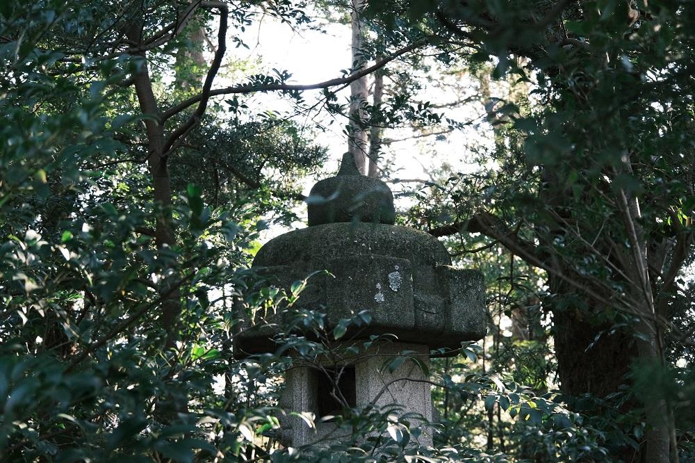 鶴岡八幡宮の境内内の風景写真