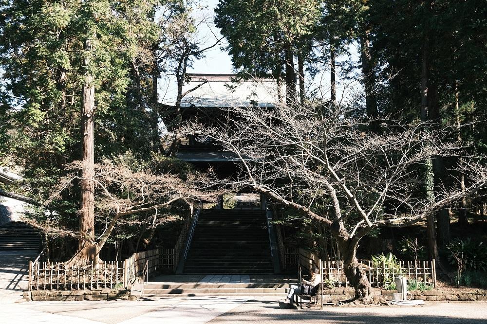 円覚寺の山門を下から望んだ写真