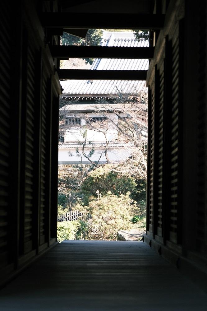 円覚寺方丈脇の名所!