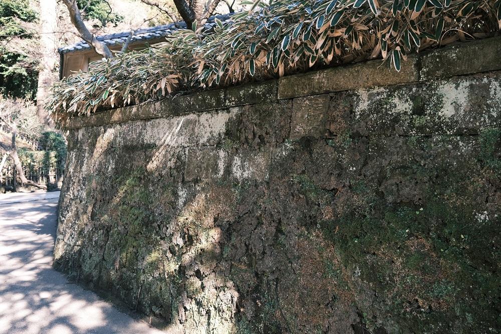 石垣の苔の風景