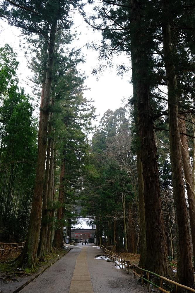 白山神社の参道の風景