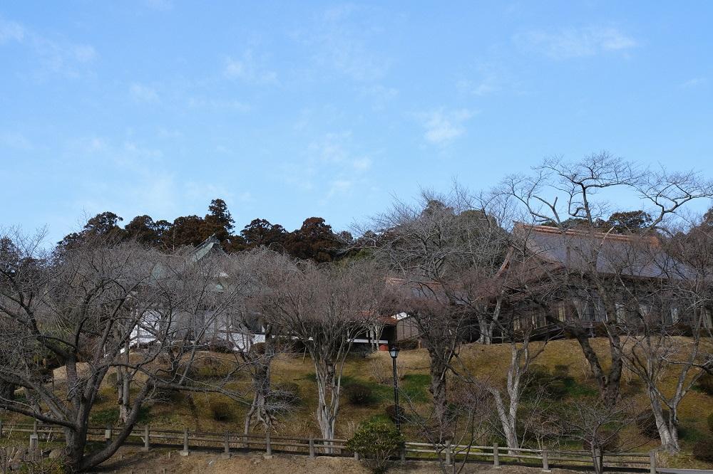 塩竃神社の冬2月の写真
