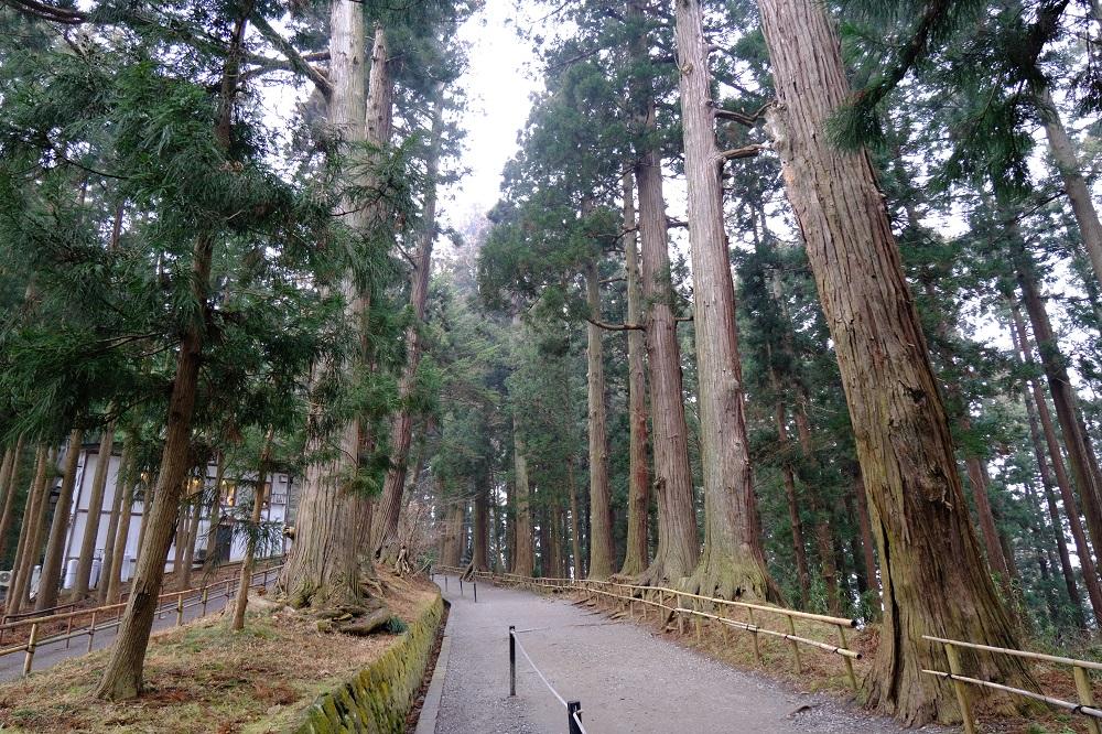 平泉月見坂の風景写真