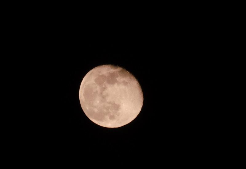 3月の十六夜月の写真