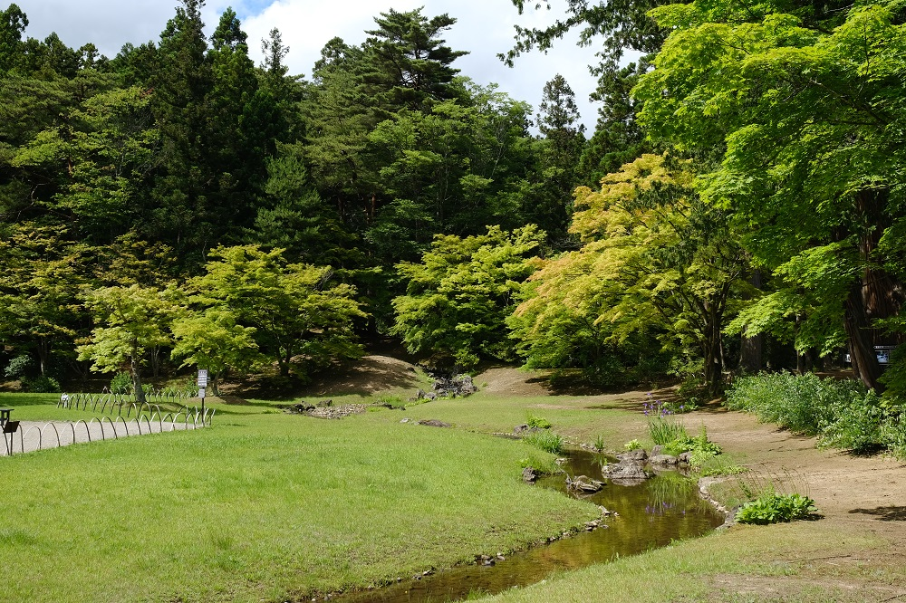 毛越寺の初夏の風景写真
