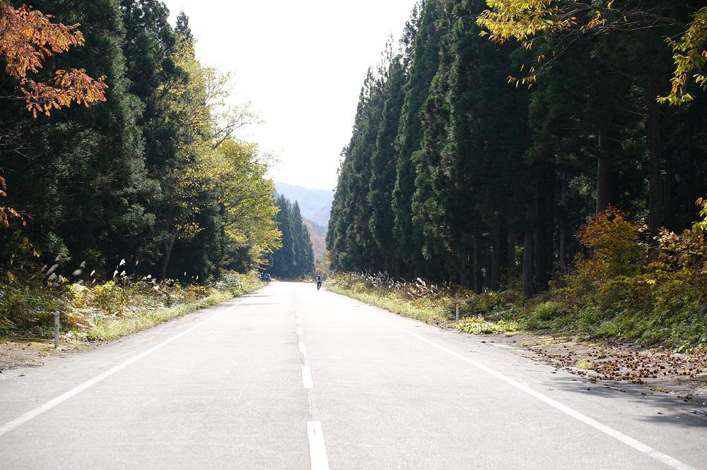 栗駒焼石ほっとラインの風景写真